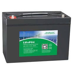 Літій залізо фосфатний акумулятор EverExceed LDP 12-100 (12В 100Ач)