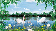 Фотообои, Белые лилии 20 листов, размер 350х196 см