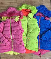 Куртка на меховой подкладке для девочек Grace оптом, 4-12 лет.