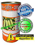 Семена кабачка Искайдер Кустовой (Италия), инкрустированные, 500 г банка (более 3 000 семян)