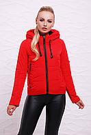 Короткая демисезонная женская красная куртка с капюшоном в спортивном стиле на молнии Куртка 17-07/1