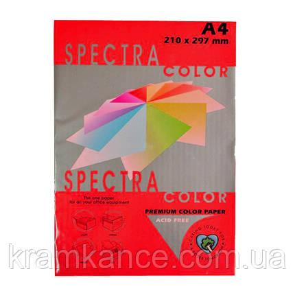 Бумага А4 80г/м2 цветная Spectra Color, Red 250, фото 2