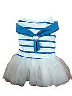 Платье для собаки Балерина -Голубой