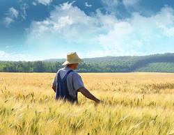 Топ-5 проблем украинских фермеров.