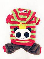 Велюровый костюм для собаки Панда-Красный