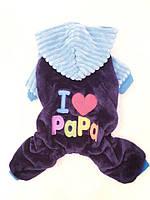 Велюровый костюм для собаки I love papa-Синий-L