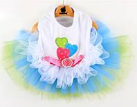 Платье для собаки Брошка-Голубой, фото 1