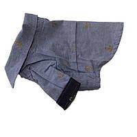 Рубашка для собак Якорь-Голубой, фото 1