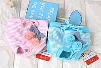 Трусики для собаки-Розовый-M, фото 1