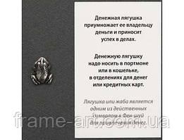 Оберег Денежная лягушка n21263-01 серебрянное покрытие