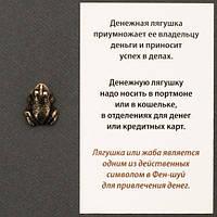 Оберіг Грошова жаба n21263-02 бронзове покриття