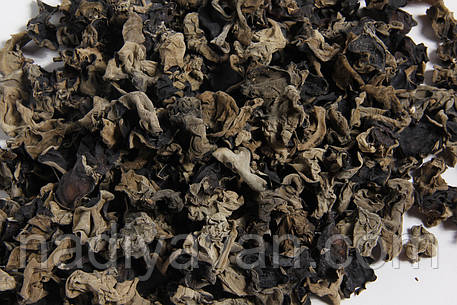 Древесный гриб Муэр сушенный целый k=1*16, фото 2