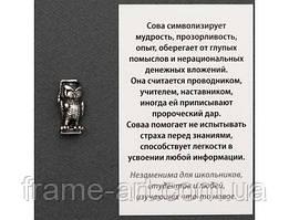 Оберіг Мудра сова n21264-03 срібне покриття (укр)