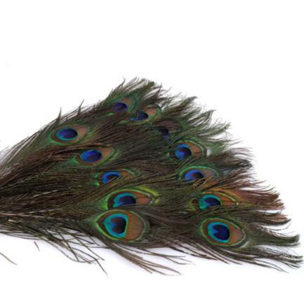 Перья павлина, 10 шт.,  длина перьев 20 - 25 см