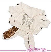 Велюровый костюм для собаки Ангел-Бежевый-M