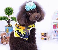 Шлейка для собак с поводком Batman-Желтый, фото 1