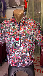 Мужская рубашка спорт Jean Piere с коротким рукавом приталенная