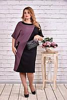 Женское прямое платье миди 0622 цвет бисквитно-черный / размер 42-74 / большие размеры