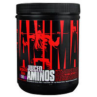 Аминокислоты  Juiced Aminos (368 g grape juiced)