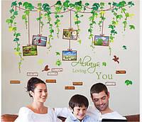Интерьерная наклейка на стену  Зеленые листья лозы (XL8148)