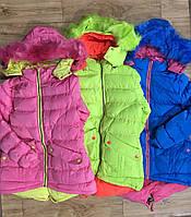 Куртки утепленные на девочку на синтепоне и меховой подкладке, Grace, 4-12 лет,  №G71658