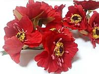 Мак дикий 4см 6 цветов, красный