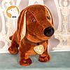 Собака Такса Бадди мягкая игрушка, фото 2