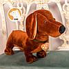 Собака Такса Бадди мягкая игрушка, фото 3