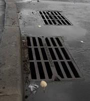 Решетка чугунная водосточная, фото 1