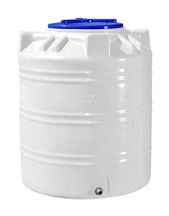 Вертикальная емкость 300 литров бочка пищевая, бак RVО, фото 2