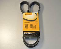 Ручейковый ремень на Renault Kangoo 1.9dCi + 1.9dTi 1997->2008 (ALT, AC) ContiTech (Германия) 6PK1210, фото 1