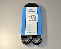 Поликлиновый (ручейковый) ремень на Renault Kangoo 97->08 (ALT)  — Dayco (США) - DAY6PK900