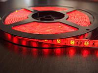 Светодиодная лента smd 5050 ip65 60д/метр влагозащита красный