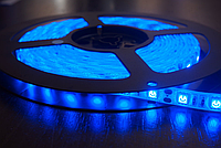 Светодиодная лента smd 5050 ip65 60д/метр влагозащита синий