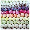 Безе разноцветное, фото 4