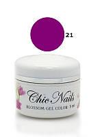 Chic Nails - Гель-лак Акварель - №21 тёмно-фиолетовый