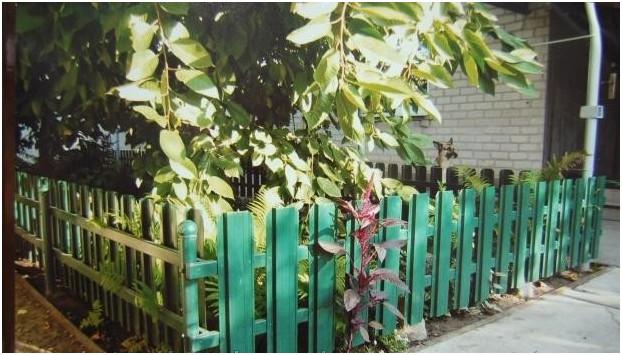 Палисадник за оградой из металлического штакетника