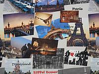 Обивочная ткань для мебели принт Париж
