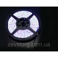 Герметичная светодиодная лента SMD 5050 (5 м) Белый цвет