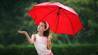 Зонты и зонтики