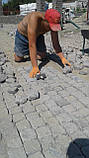 Укладка тротуарной плитки под ключ, фото 2