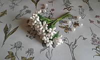 Складні тичинки  (незабудки ) - білі