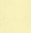 Термо ролеты Арджент (лимонный), фото 3