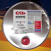 Антифриз красный G12+ ХАДО Готовый, на разлив
