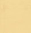 Термо ролети Арджент (бежево-жовтий), фото 3