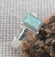 Серебряное кольцо с лабрадором 17 размер