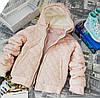 Куртки демисезонные для девочек ВD0015-128р