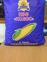 Семена подсолнечника под ГРАНСТАР от производителя