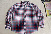 Яркая и модная рубашка True Dudes