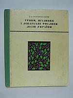 Телішевський Д.А. Гриби, ягідники і лікарські рослини лісів України (б/у)., фото 1